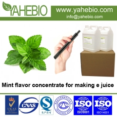 e flavor concentrate Guangzhou supplier